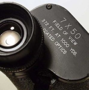 Binocular Magnification